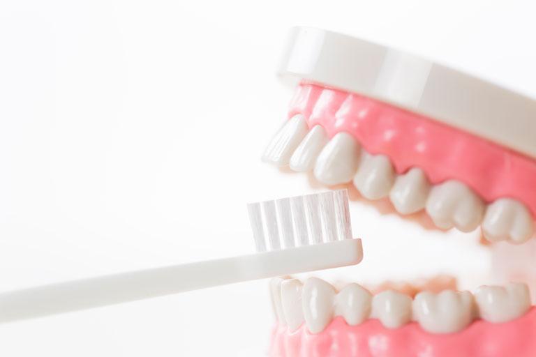 歯周病が口臭の原因に