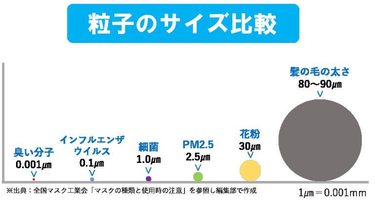 粒子のサイズ比較